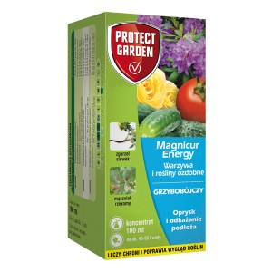 Magnicur Energy 100 ml